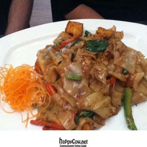 "Photo of My Thai  by <a href=""/members/profile/PennsyltuckyVeggie"">PennsyltuckyVeggie</a> <br/>Tofu Phad Ki Mao <br/> October 20, 2011  - <a href='/contact/abuse/image/28594/11372'>Report</a>"