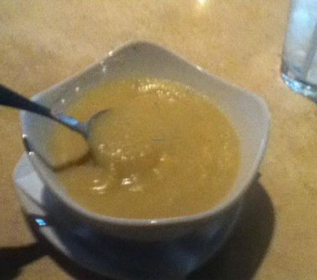 """Photo of Otto's Pub and Brewery  by <a href=""""/members/profile/PennsyltuckyVeggie"""">PennsyltuckyVeggie</a> <br/>Parsnip Soup (vegetarian) <br/> October 19, 2011  - <a href='/contact/abuse/image/28595/192125'>Report</a>"""