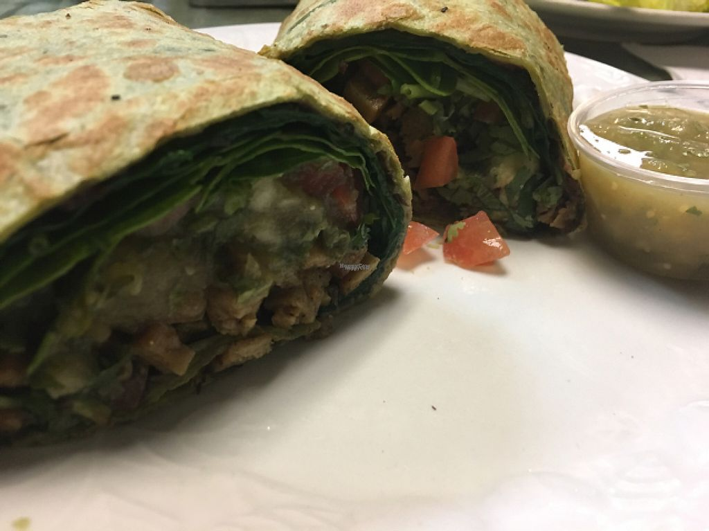 """Photo of Vegetarian Express  by <a href=""""/members/profile/mongoose10"""">mongoose10</a> <br/>fish burrito in spinach wrap - vegan! <br/> February 1, 2017  - <a href='/contact/abuse/image/28736/220654'>Report</a>"""