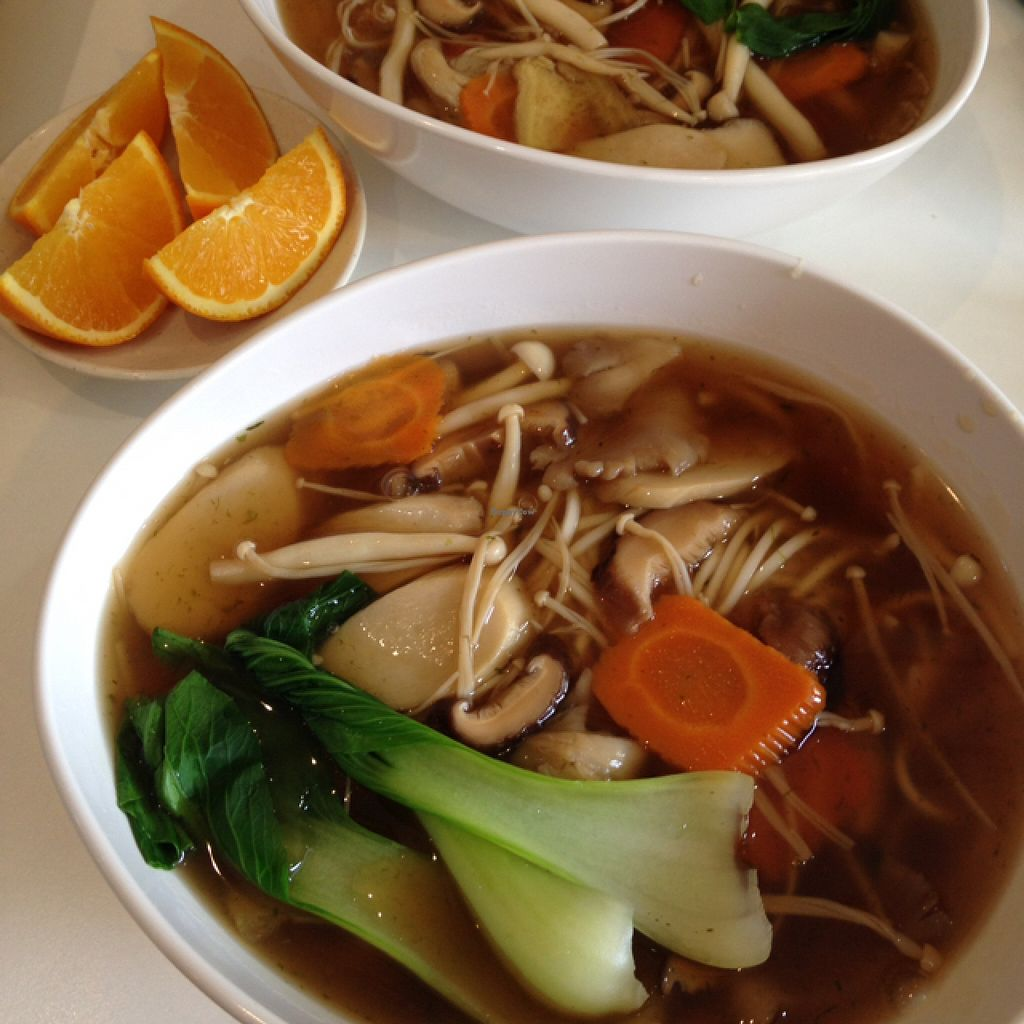 """Photo of Coya Healthy Cuisine  by <a href=""""/members/profile/VeganEllise"""">VeganEllise</a> <br/>mushroom soup  <br/> July 26, 2016  - <a href='/contact/abuse/image/28870/162540'>Report</a>"""