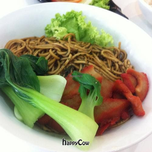 """Photo of Coya Healthy Cuisine  by <a href=""""/members/profile/Teppiedoo"""">Teppiedoo</a> <br/>savory noodles with bok choy and faux pork <br/> September 8, 2012  - <a href='/contact/abuse/image/28870/37716'>Report</a>"""
