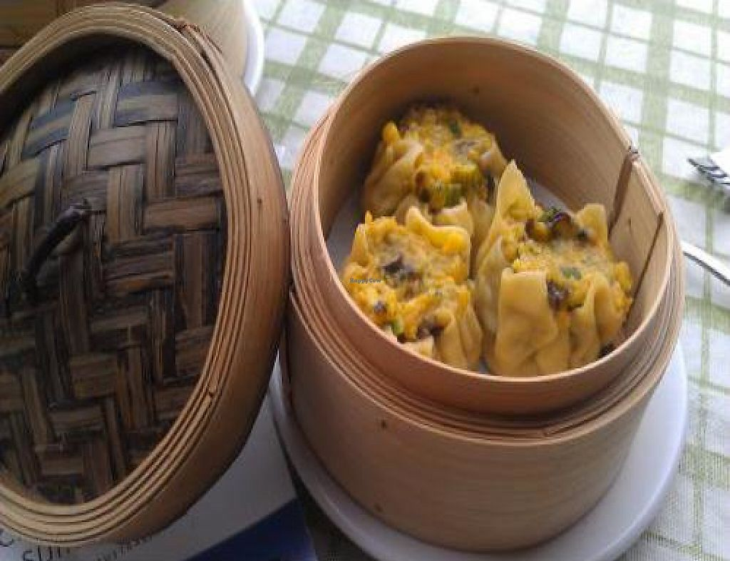 """Photo of Taste of the Orient  by <a href=""""/members/profile/cupcakes6"""">cupcakes6</a> <br/>Vegetarian Dim Sims <br/> October 23, 2011  - <a href='/contact/abuse/image/28888/192688'>Report</a>"""