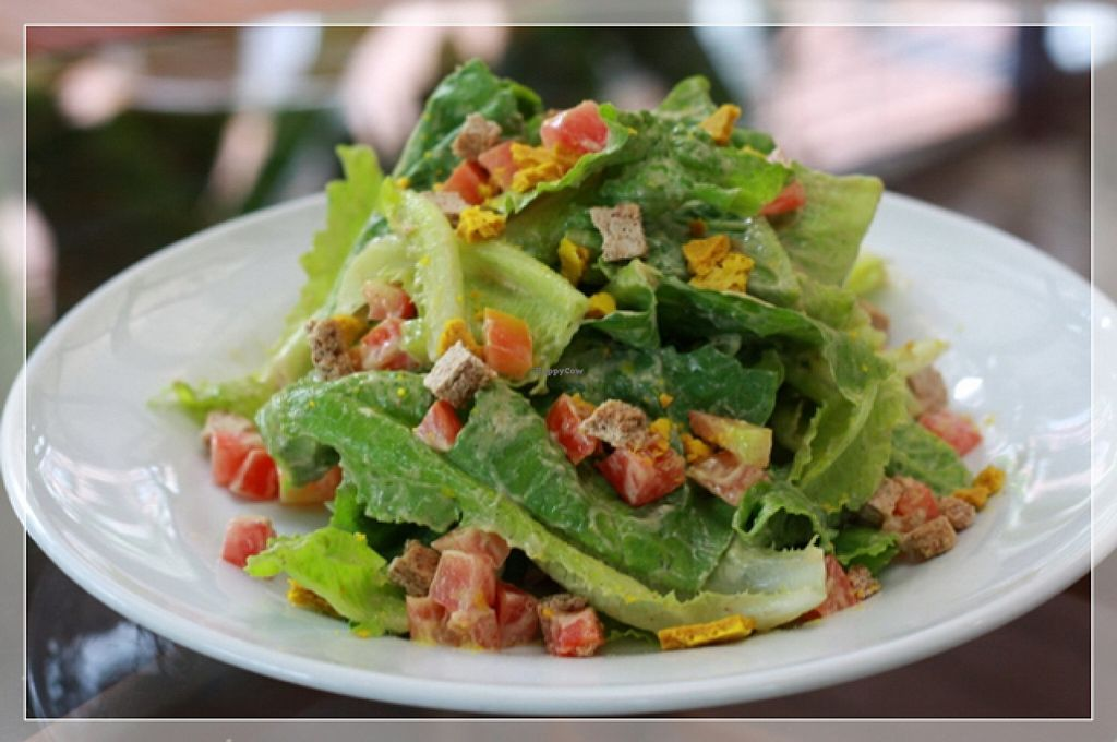 """Photo of Rasayana Raw Food Cafe  by <a href=""""/members/profile/Amonrat"""">Amonrat</a> <br/>caesar salad <br/> February 4, 2016  - <a href='/contact/abuse/image/28929/134936'>Report</a>"""