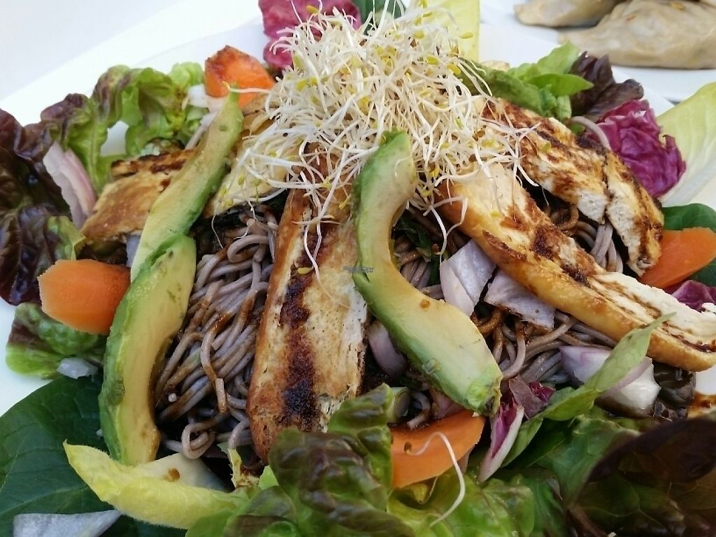 """Photo of Veggie Garden - Dels Angels  by <a href=""""/members/profile/eric"""">eric</a> <br/>soba salad <br/> April 2, 2017  - <a href='/contact/abuse/image/28983/244055'>Report</a>"""