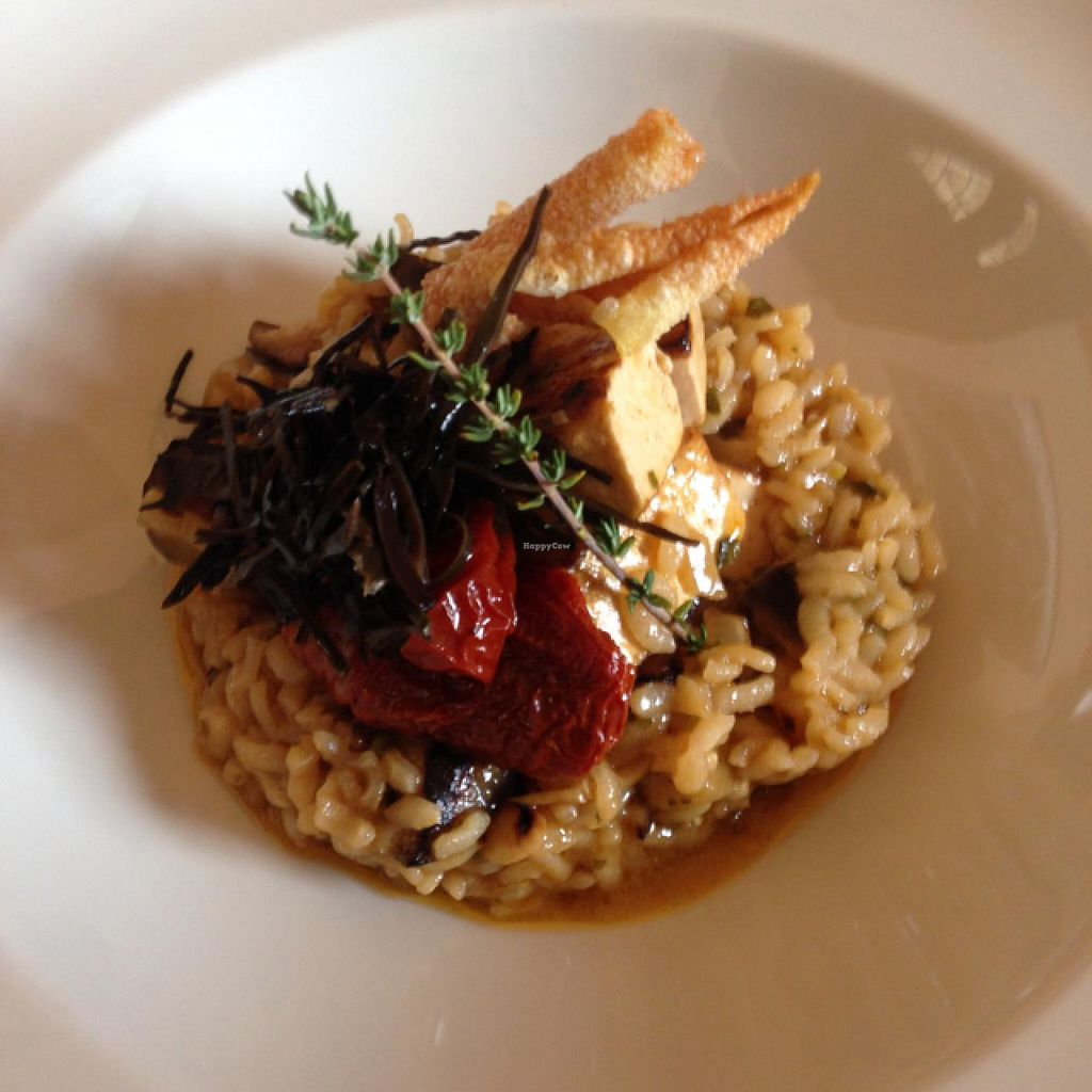 "Photo of Hesperides  by <a href=""/members/profile/HerbertBay"">HerbertBay</a> <br/>Vegan Risotto with Tofu <br/> December 23, 2014  - <a href='/contact/abuse/image/29022/88532'>Report</a>"