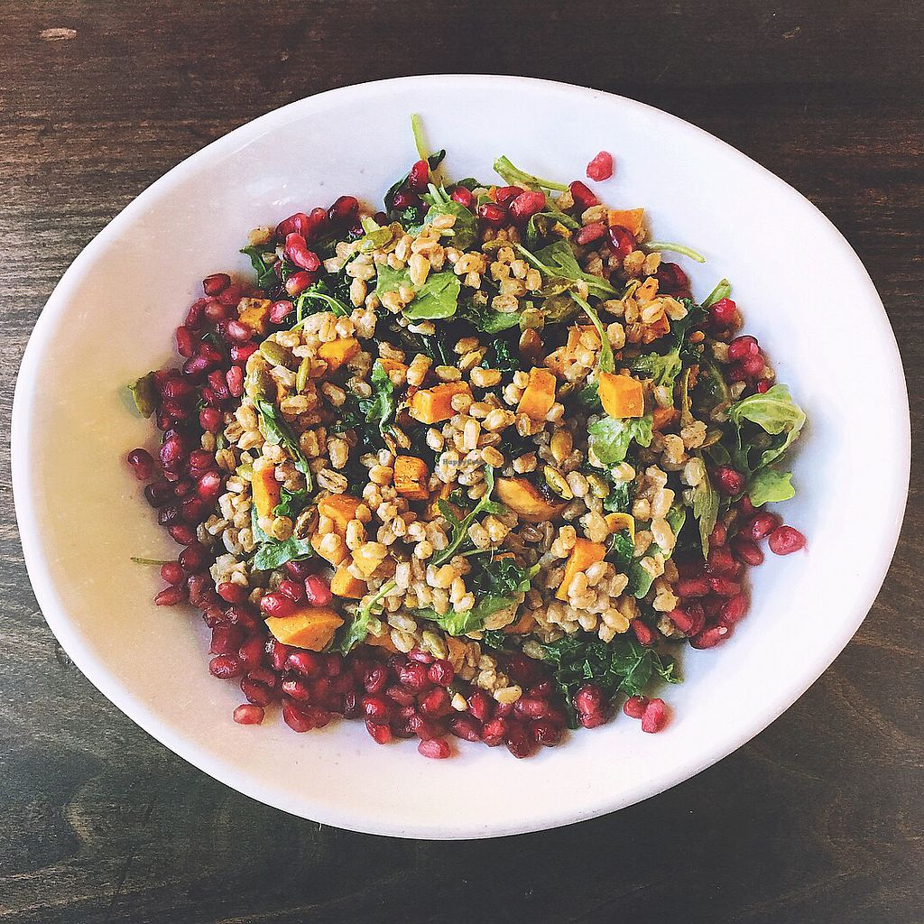 """Photo of Native Foods - Tigard  by <a href=""""/members/profile/NadenFamily"""">NadenFamily</a> <br/>Roasted sweet potato and Ferro salad <br/> October 28, 2017  - <a href='/contact/abuse/image/29043/319632'>Report</a>"""