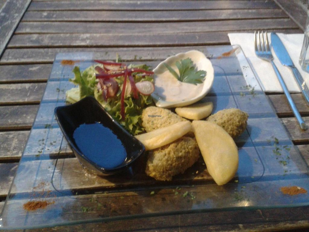 """Photo of Le Cours en Vert  by <a href=""""/members/profile/JonJon"""">JonJon</a> <br/>Panisse and falafel <br/> May 25, 2014  - <a href='/contact/abuse/image/29056/70718'>Report</a>"""