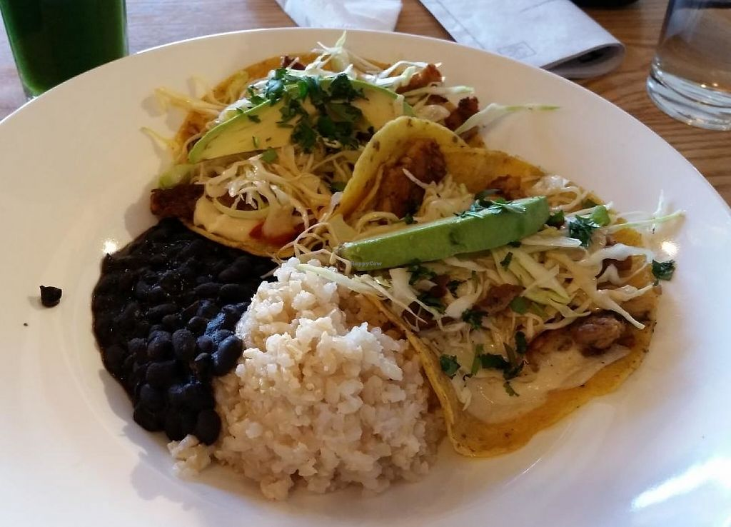 """Photo of CLOSED: Body Cafe  by <a href=""""/members/profile/bduboff"""">bduboff</a> <br/>Asian tacos with seitan  <br/> March 21, 2015  - <a href='/contact/abuse/image/29065/209230'>Report</a>"""