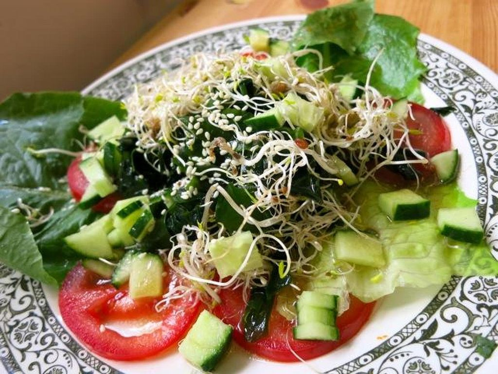 """Photo of TerraZen Centre  by <a href=""""/members/profile/Chnanis"""">Chnanis</a> <br/>Seaweed Salad <br/> August 27, 2014  - <a href='/contact/abuse/image/29084/78341'>Report</a>"""