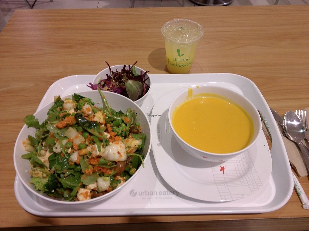 "Photo of Urban Herbivore - Eaton Centre  by <a href=""/members/profile/Ryecatcher"">Ryecatcher</a> <br/>A panda bowl and a delicious soup <br/> January 5, 2016  - <a href='/contact/abuse/image/29094/131108'>Report</a>"