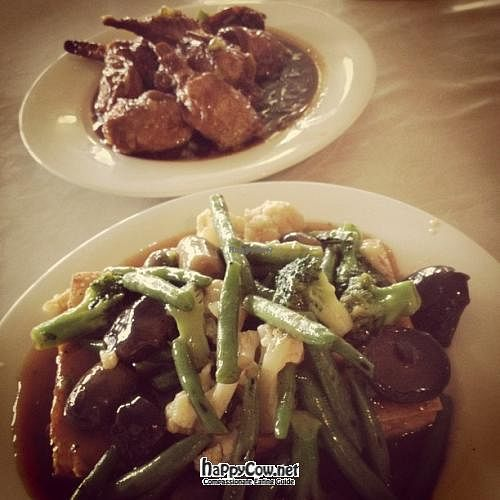 """Photo of CLOSED: Green Vegetarian Restaurant and Bar  by <a href=""""/members/profile/Daywithoutrain"""">Daywithoutrain</a> <br/>Happy Chicken Drumstick and Stir Fry Vegetables <br/> February 7, 2012  - <a href='/contact/abuse/image/29103/27863'>Report</a>"""