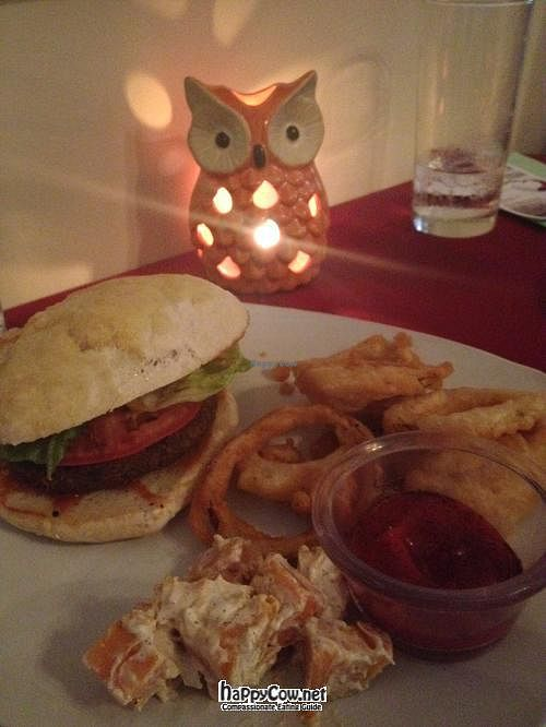 """Photo of CLOSED: AVA Restaurant and Wine Bar  by <a href=""""/members/profile/MegPrice"""">MegPrice</a> <br/>Black Bean Burger with onions rings and a sweet potato salad with a ginger cumin dressing <br/> May 27, 2012  - <a href='/contact/abuse/image/29108/32401'>Report</a>"""