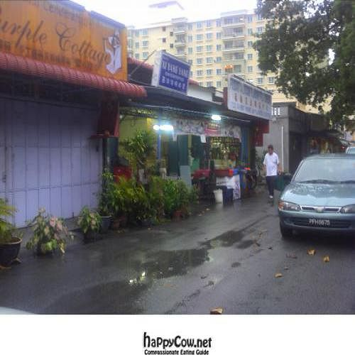 """Photo of CLOSED: Thai Vegetarian  by <a href=""""/members/profile/Grapevine"""">Grapevine</a> <br/>the shop which has green in front  <br/> November 12, 2011  - <a href='/contact/abuse/image/29118/12006'>Report</a>"""