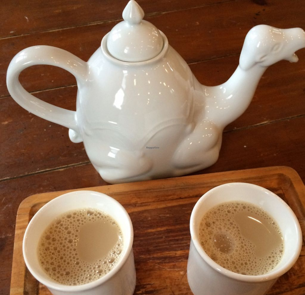 """Photo of Tea Sutra Teahouse  by <a href=""""/members/profile/Love%20to%20munch"""">Love to munch</a> <br/>chai for 2 <br/> February 18, 2016  - <a href='/contact/abuse/image/29138/194128'>Report</a>"""
