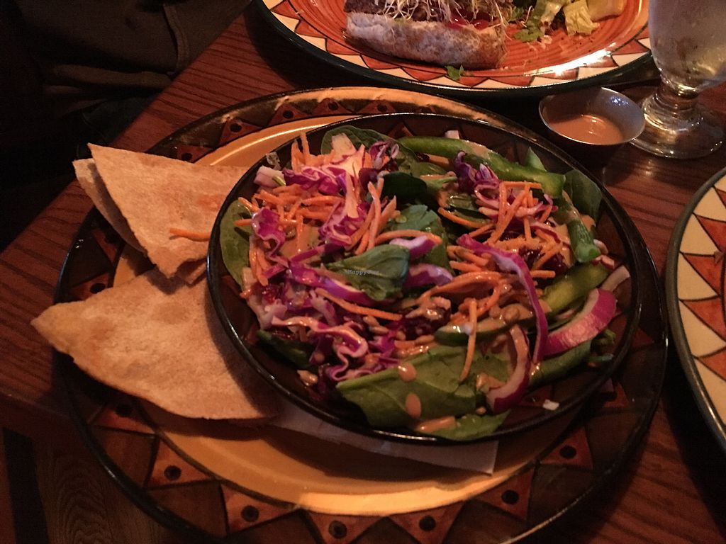 """Photo of Calactus Cafe  by <a href=""""/members/profile/gretchencita"""">gretchencita</a> <br/>Spinach, dried cranberry, and sunflower-seed salad + delicious flatbread (possibly house-made pita?) that tastes like great garlic bread <br/> July 16, 2017  - <a href='/contact/abuse/image/2916/280810'>Report</a>"""