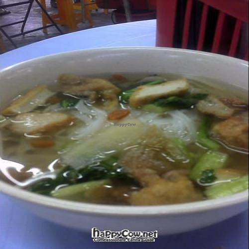 "Photo of Hoe Shin Jai   by <a href=""/members/profile/Grapevine"">Grapevine</a> <br/>flat noodle/kuah teow soup