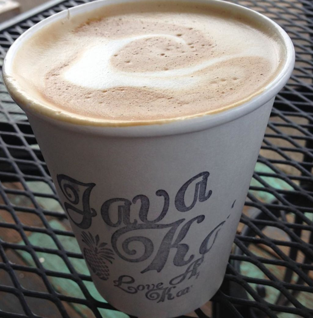 "Photo of Java Kai  by <a href=""/members/profile/Iamcharliebrown"">Iamcharliebrown</a> <br/>Soy Latte <br/> March 10, 2014  - <a href='/contact/abuse/image/29226/199443'>Report</a>"