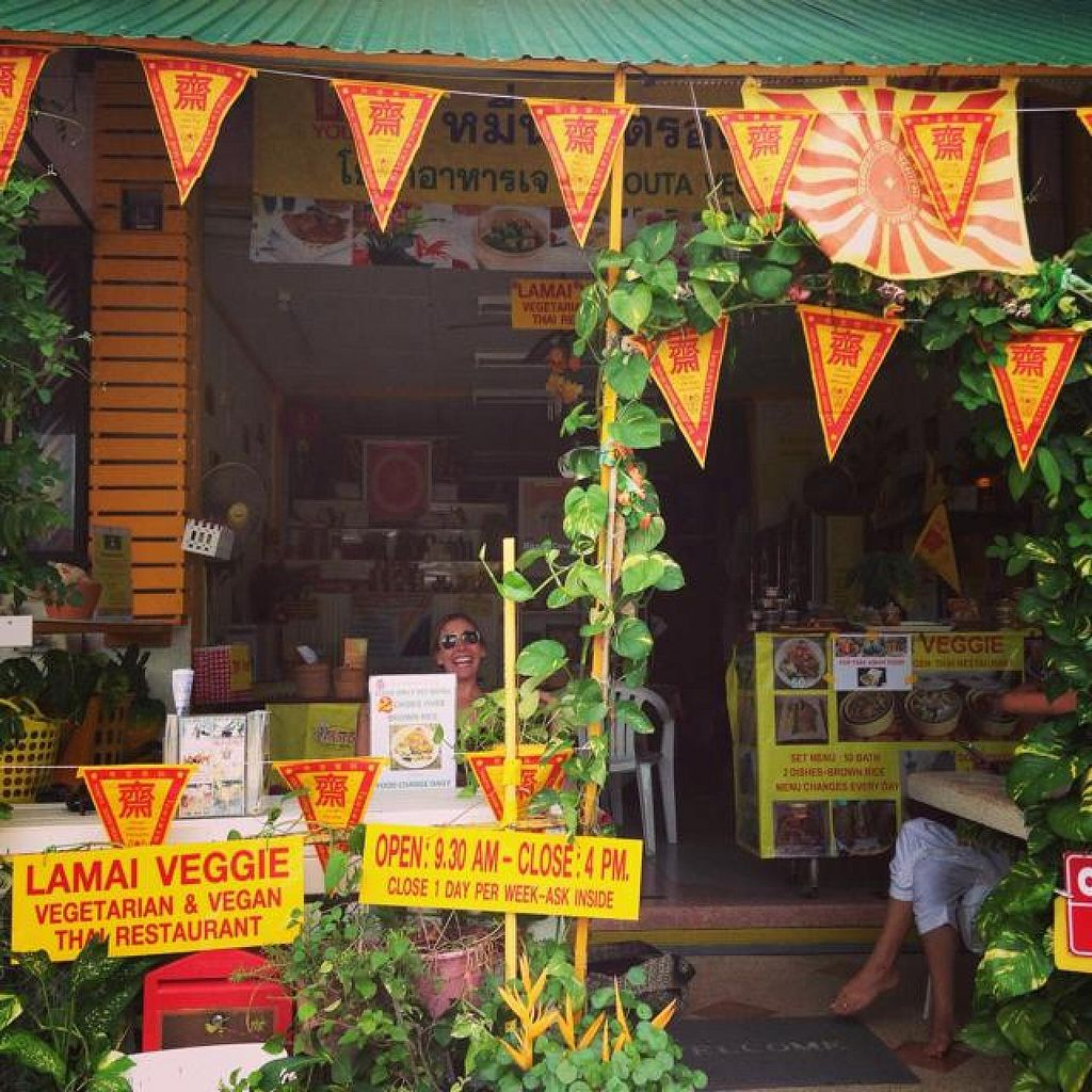 "Photo of Lamai Veggie  by <a href=""/members/profile/mikeybutt"">mikeybutt</a> <br/>Lamai Veggie! we found it.  <br/> November 28, 2014  - <a href='/contact/abuse/image/29279/86699'>Report</a>"
