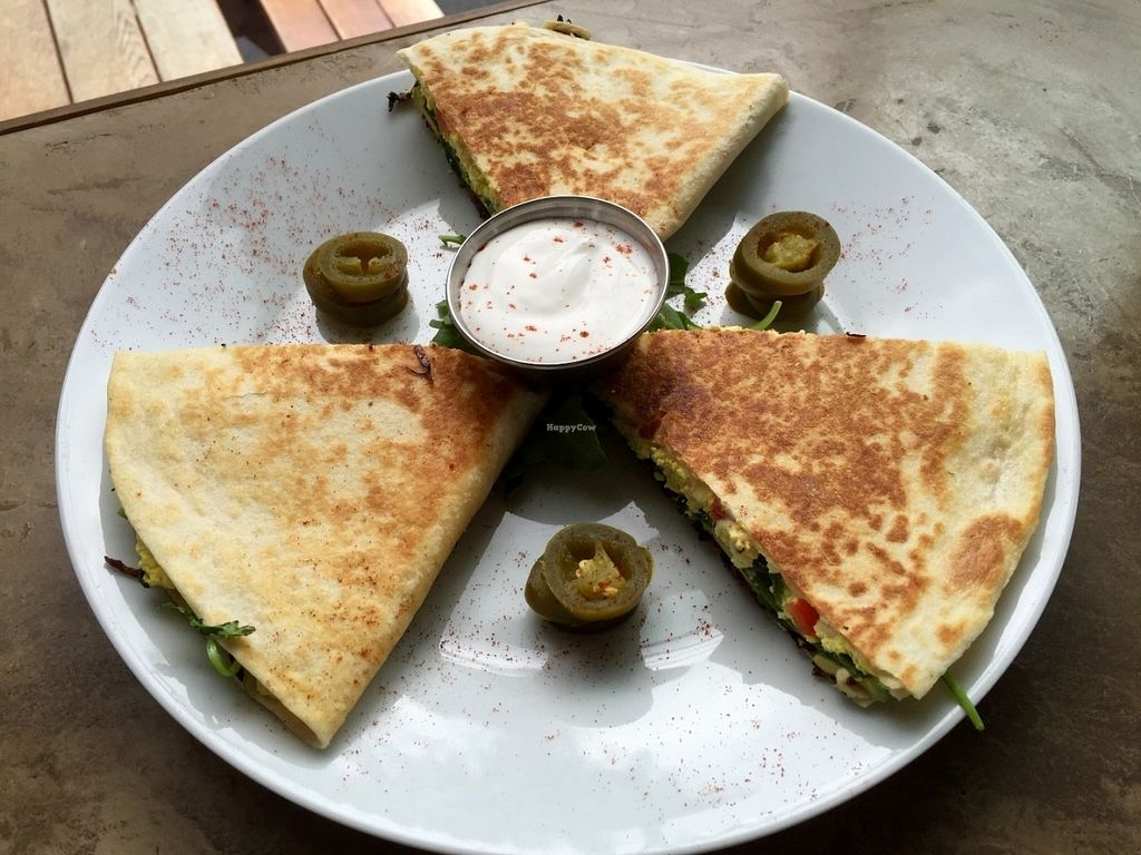 """Photo of CLOSED: A N D Cafe  by <a href=""""/members/profile/burgerabroad"""">burgerabroad</a> <br/>jackfruit bacon tofu quesadilla <br/> July 13, 2016  - <a href='/contact/abuse/image/29296/159644'>Report</a>"""