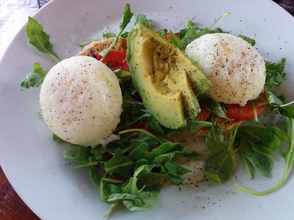 """Photo of CLOSED: A N D Cafe  by <a href=""""/members/profile/MizzB"""">MizzB</a> <br/>Veggies in a mess; greens, tomato, avocado, biscuits with herbed tofu, or two poached eggs. Non vegan dining companion enjoyed it with the eggs. Not 100% vegan, though vegetarian <br/> October 1, 2016  - <a href='/contact/abuse/image/29296/178987'>Report</a>"""