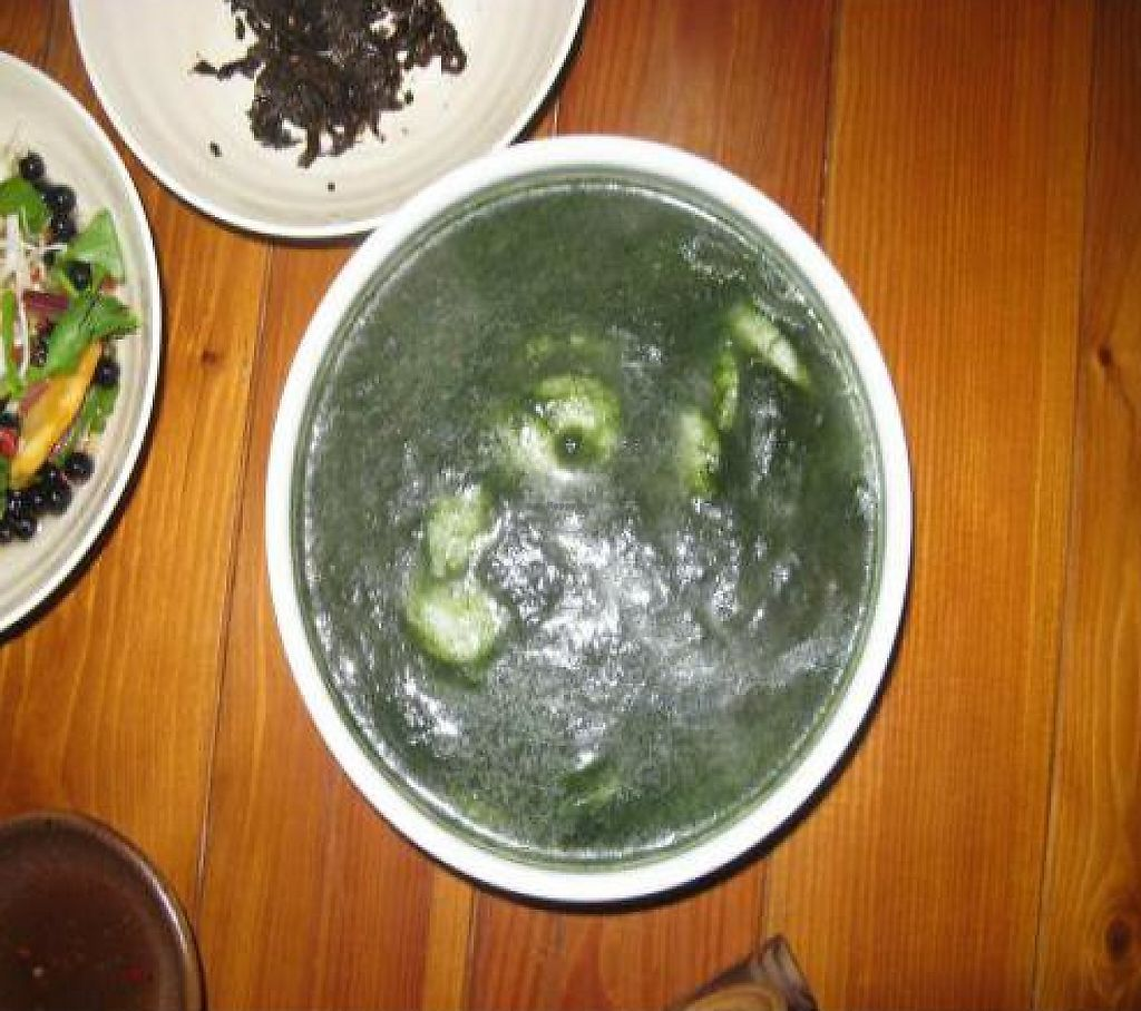 """Photo of Mulmaegol  by <a href=""""/members/profile/ahkow"""">ahkow</a> <br/>Sea vegetable tteok (rice cake) soup <br/> December 1, 2011  - <a href='/contact/abuse/image/29299/196298'>Report</a>"""