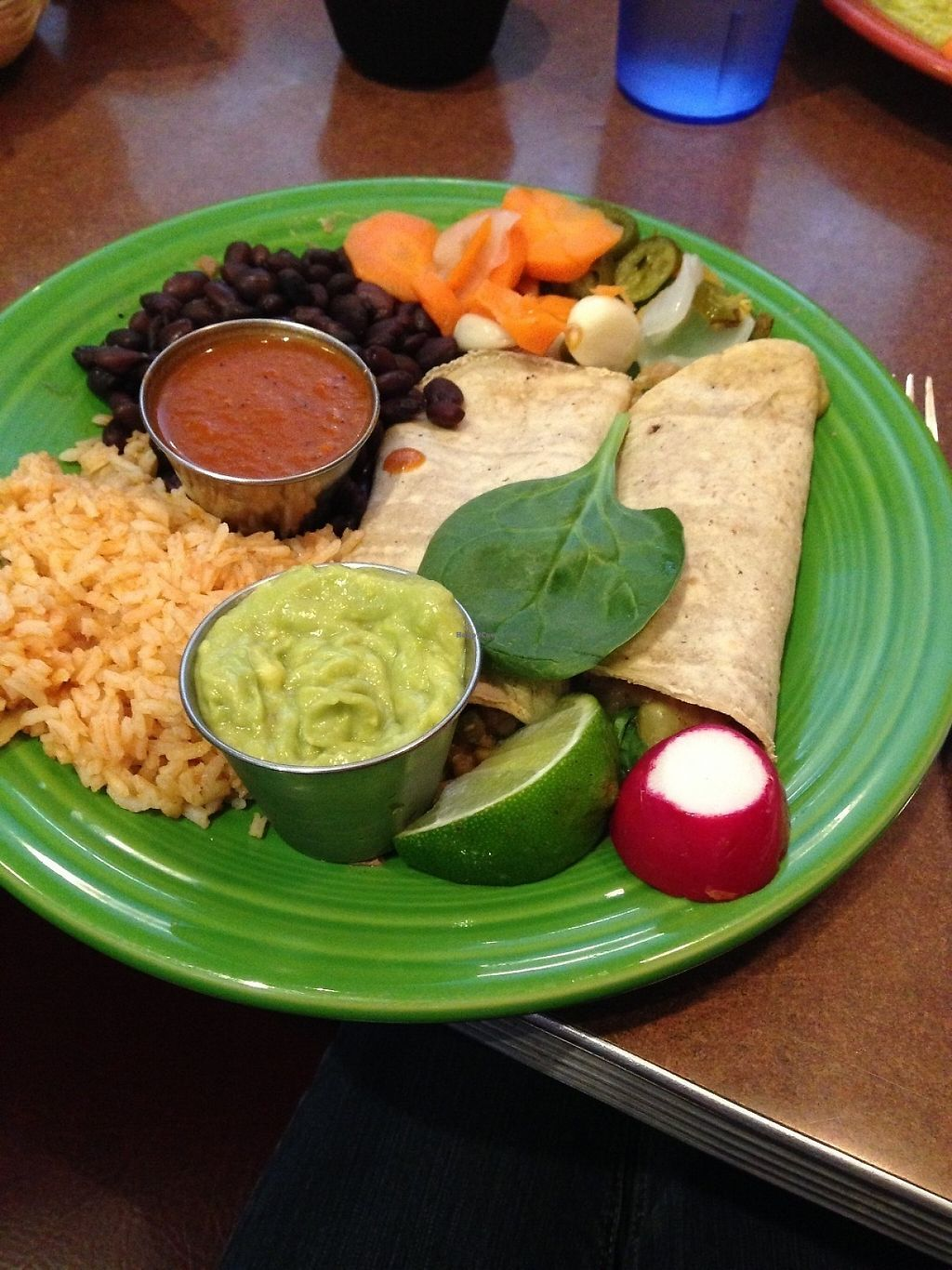 "Photo of Viva Taqueria and Cantina  by <a href=""/members/profile/brooke____bear"">brooke____bear</a> <br/>Vegan enchiladas with the sauce on the side  <br/> May 6, 2017  - <a href='/contact/abuse/image/29363/256033'>Report</a>"