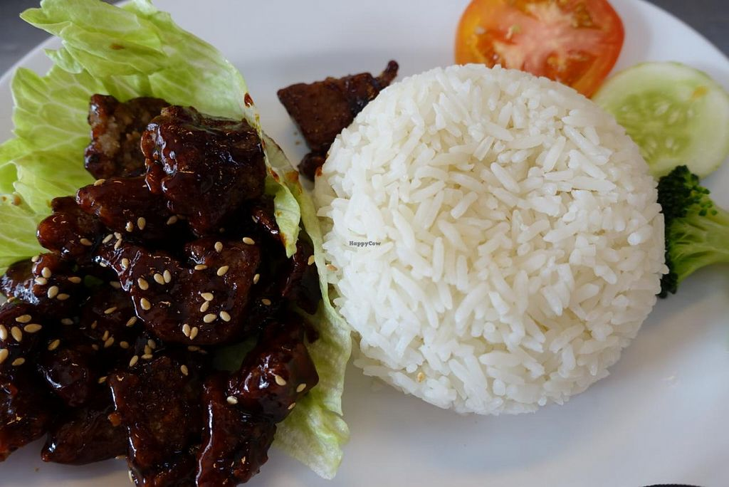 "Photo of Vegetarian Villas  by <a href=""/members/profile/JimmySeah"">JimmySeah</a> <br/>Mock Pork Rib rice <br/> January 30, 2015  - <a href='/contact/abuse/image/29376/91770'>Report</a>"