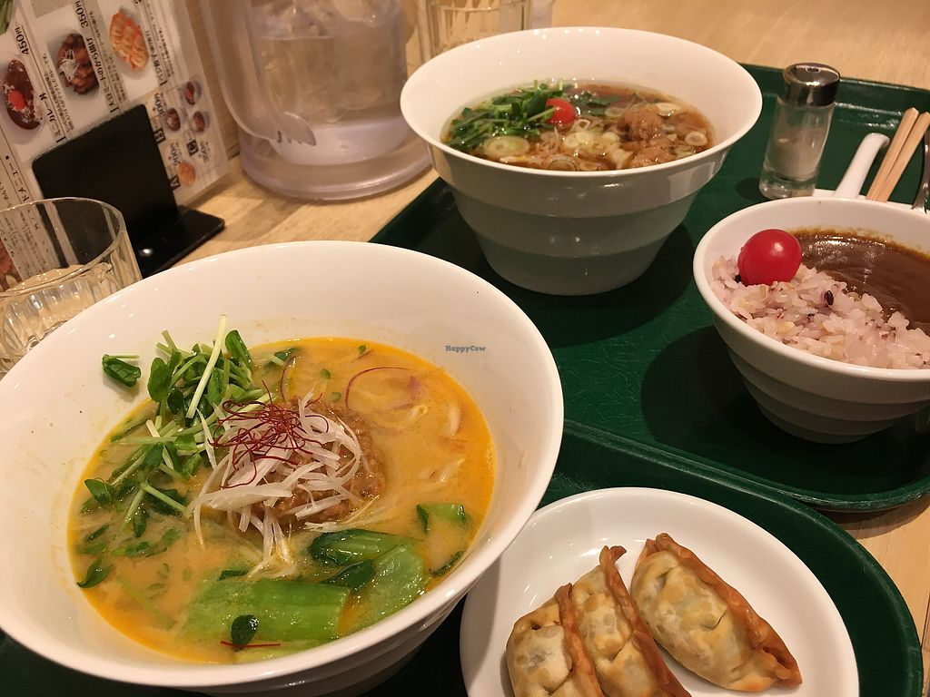 "Photo of T's Tantan - Tokyo Station  by <a href=""/members/profile/CamilaSilvaL"">CamilaSilvaL</a> <br/>Ramen, gyosas and curry (I didn't like it that much) <br/> March 18, 2018  - <a href='/contact/abuse/image/29533/372397'>Report</a>"