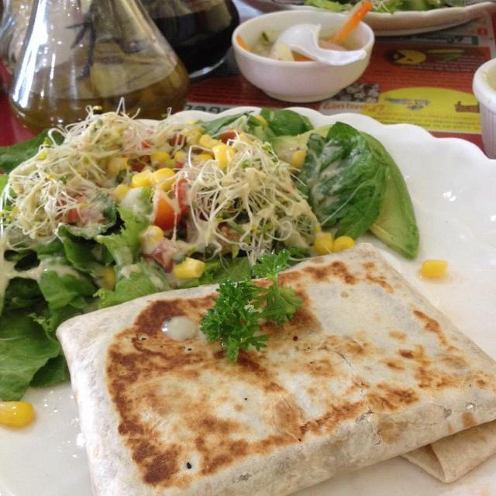 """Photo of Hostel Shakti  by <a href=""""/members/profile/JennyStench"""">JennyStench</a> <br/>vegan burrito  <br/> March 18, 2014  - <a href='/contact/abuse/image/29542/66159'>Report</a>"""