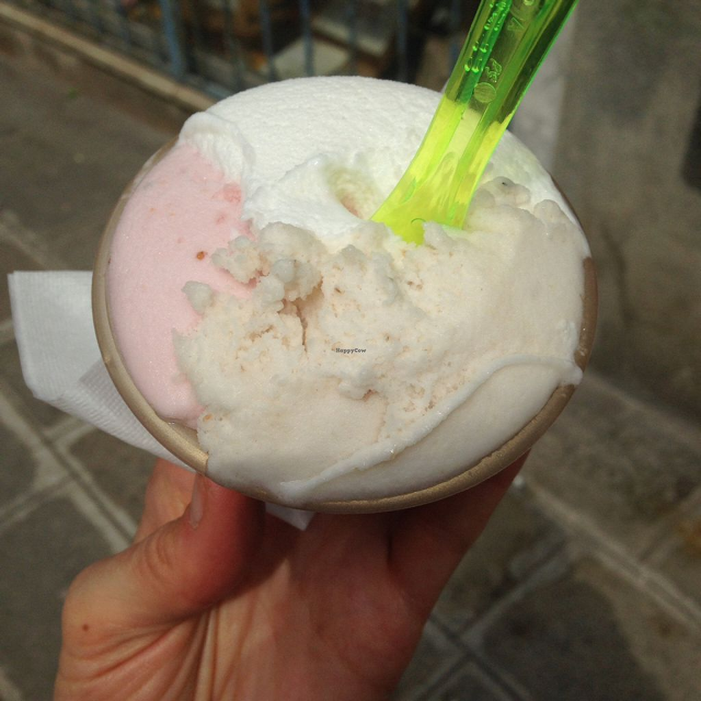 "Photo of Alaska Gelateria  by <a href=""/members/profile/imoimoimo"">imoimoimo</a> <br/>strawberry, lemon & pear vegan sorbet <br/> May 10, 2016  - <a href='/contact/abuse/image/29663/148435'>Report</a>"