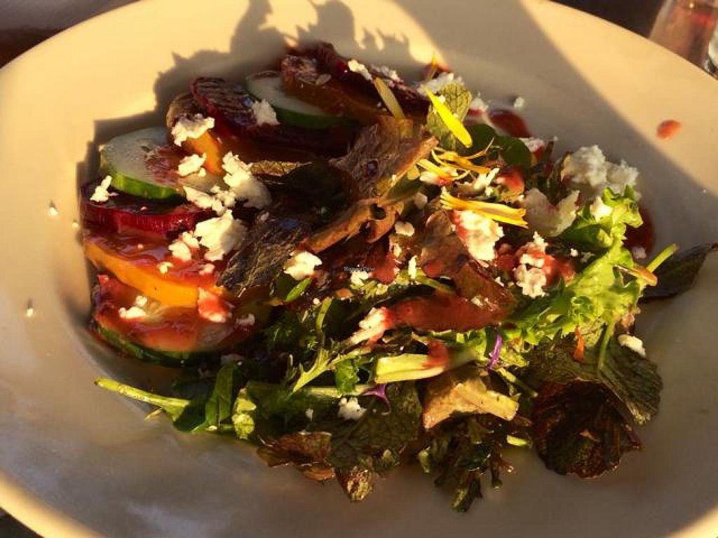 "Photo of Stonecat Cafe  by <a href=""/members/profile/laurabartner"">laurabartner</a> <br/>local beer salad <br/> August 1, 2014  - <a href='/contact/abuse/image/29742/75769'>Report</a>"