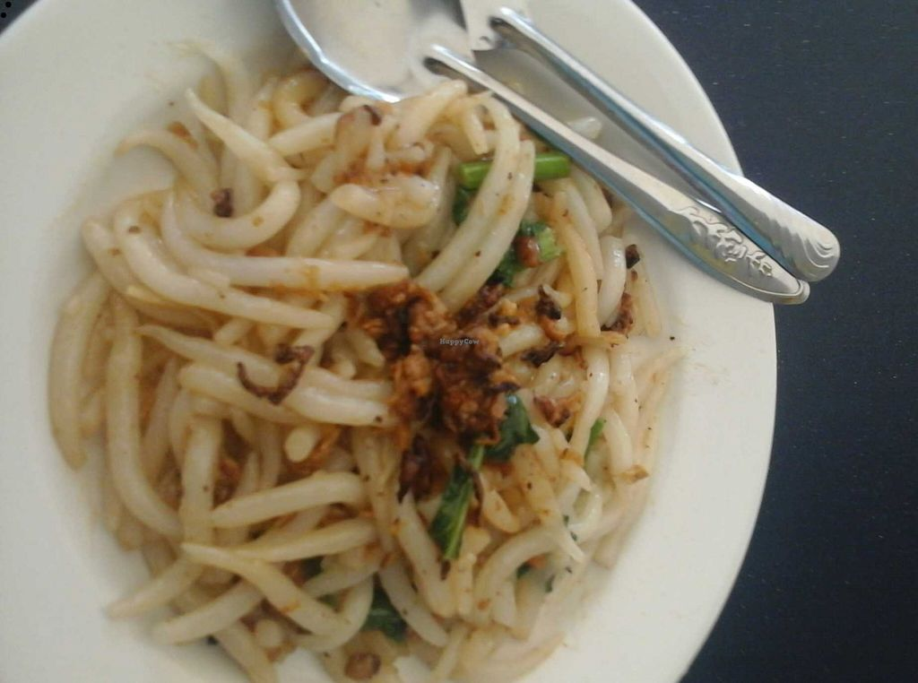 """Photo of CLOSED: Love Land Vegetarian  by <a href=""""/members/profile/junya"""">junya</a> <br/>Mouse mee kolok: a rice noodle (said to be shaped like a mouse tail!), tossed in dressing <br/> December 7, 2015  - <a href='/contact/abuse/image/29929/127543'>Report</a>"""
