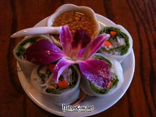 "Photo of Orchid Thai Cafe  by <a href=""/members/profile/faisca"">faisca</a> <br/>Vegan Summer Rolls <br/> July 5, 2012  - <a href='/contact/abuse/image/30056/34182'>Report</a>"