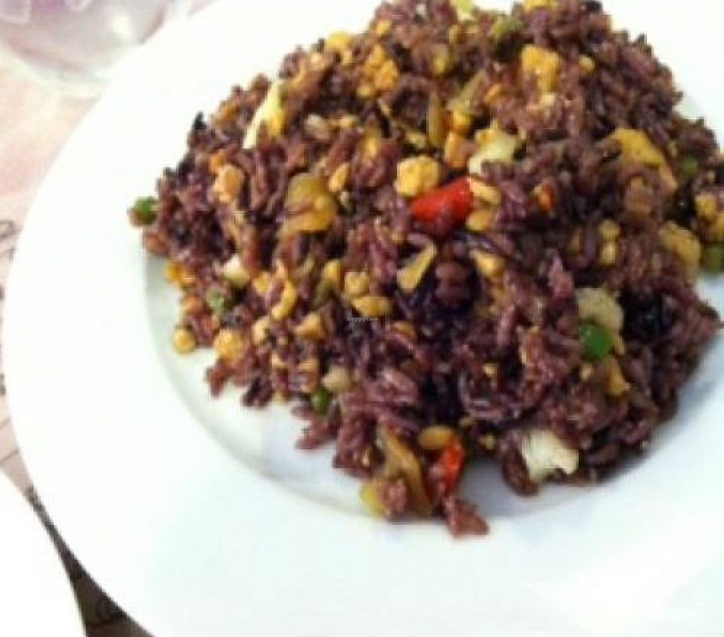 """Photo of Vegan Tree  by <a href=""""/members/profile/nardanddee"""">nardanddee</a> <br/>Joy Fried Rice <br/> February 22, 2012  - <a href='/contact/abuse/image/30106/223249'>Report</a>"""
