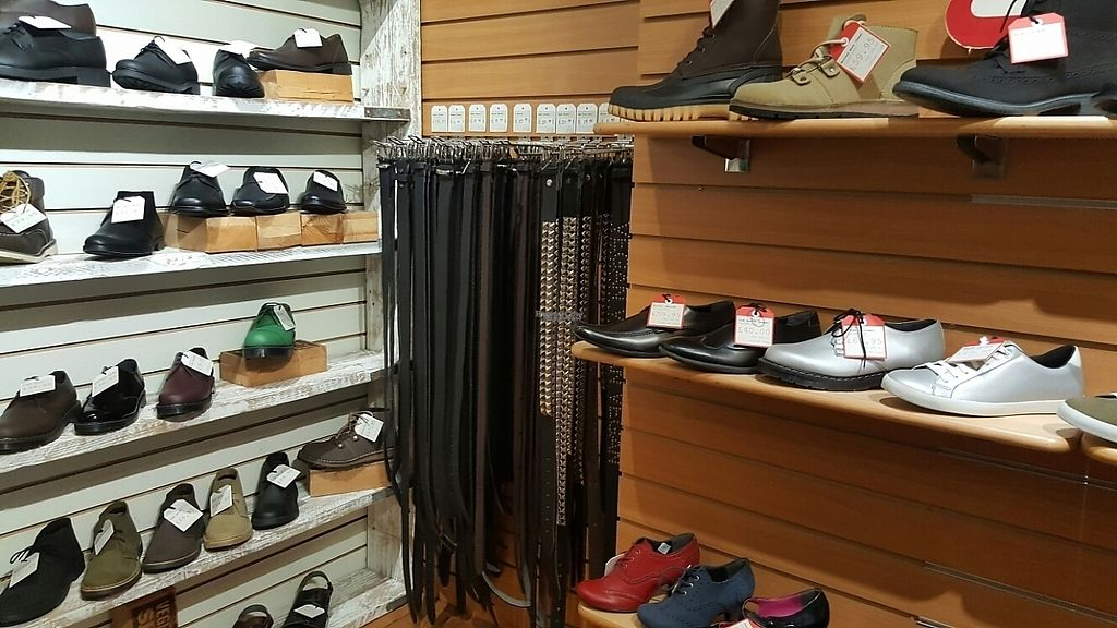 """Photo of Vegetarian Shoes  by <a href=""""/members/profile/Clare"""">Clare</a> <br/>Belts <br/> February 28, 2017  - <a href='/contact/abuse/image/30114/231226'>Report</a>"""