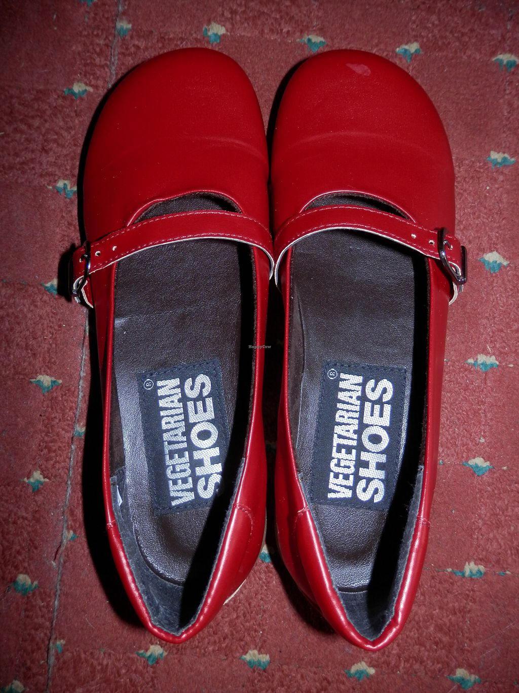 """Photo of Vegetarian Shoes  by <a href=""""/members/profile/Vegan_Belle"""">Vegan_Belle</a> <br/>Ally Sandals purchased from Vegetarian Shoes <br/> October 24, 2017  - <a href='/contact/abuse/image/30114/318346'>Report</a>"""