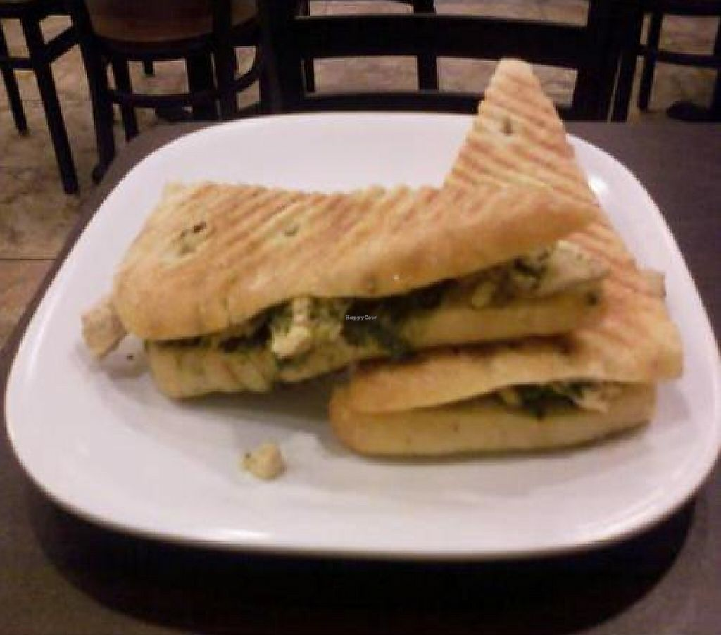 """Photo of Fresh Healthy Cafe  by <a href=""""/members/profile/Missheyyythere"""">Missheyyythere</a> <br/>The pesto gardien chicken panini   <br/> February 19, 2012  - <a href='/contact/abuse/image/30203/223189'>Report</a>"""