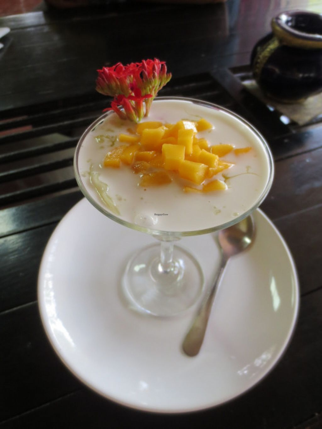 "Photo of Isara Garden's  by <a href=""/members/profile/lisaz3349"">lisaz3349</a> <br/>Learned how to make mango tapioca pudding!  <br/> March 17, 2016  - <a href='/contact/abuse/image/30214/140356'>Report</a>"