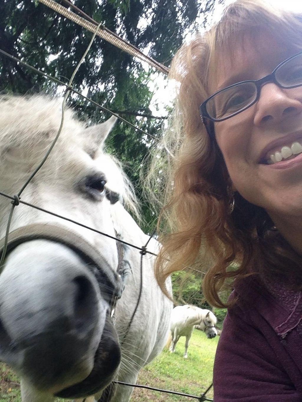 """Photo of Someday Farm Vegan Bed and Breakfast  by <a href=""""/members/profile/BethanyDavis"""">BethanyDavis</a> <br/>Selfie (*for the horse!) <br/> August 3, 2014  - <a href='/contact/abuse/image/30230/75904'>Report</a>"""