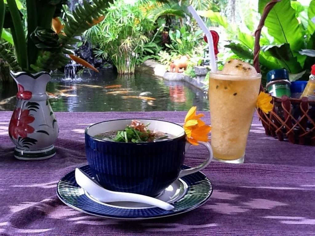 """Photo of CLOSED: Bueng Pai Farm Restaurant  by <a href=""""/members/profile/happy_haarpist"""">happy_haarpist</a> <br/>Excellent herbal teas, drinks and smoothies <br/> March 5, 2014  - <a href='/contact/abuse/image/30285/65379'>Report</a>"""