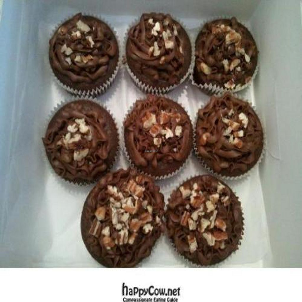 """Photo of CLOSED: Blissfully Vegan Cupcakes  by <a href=""""/members/profile/carolmorgancox"""">carolmorgancox</a> <br/>Delivery of my order of Basico Chocolate cupcakes - delicious! <br/> February 14, 2012  - <a href='/contact/abuse/image/30331/28358'>Report</a>"""