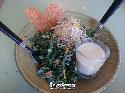 """Photo of Peace Pies  by <a href=""""/members/profile/Sonja%20and%20Dirk"""">Sonja and Dirk</a> <br/>kale salad <br/> May 27, 2012  - <a href='/contact/abuse/image/30332/32393'>Report</a>"""