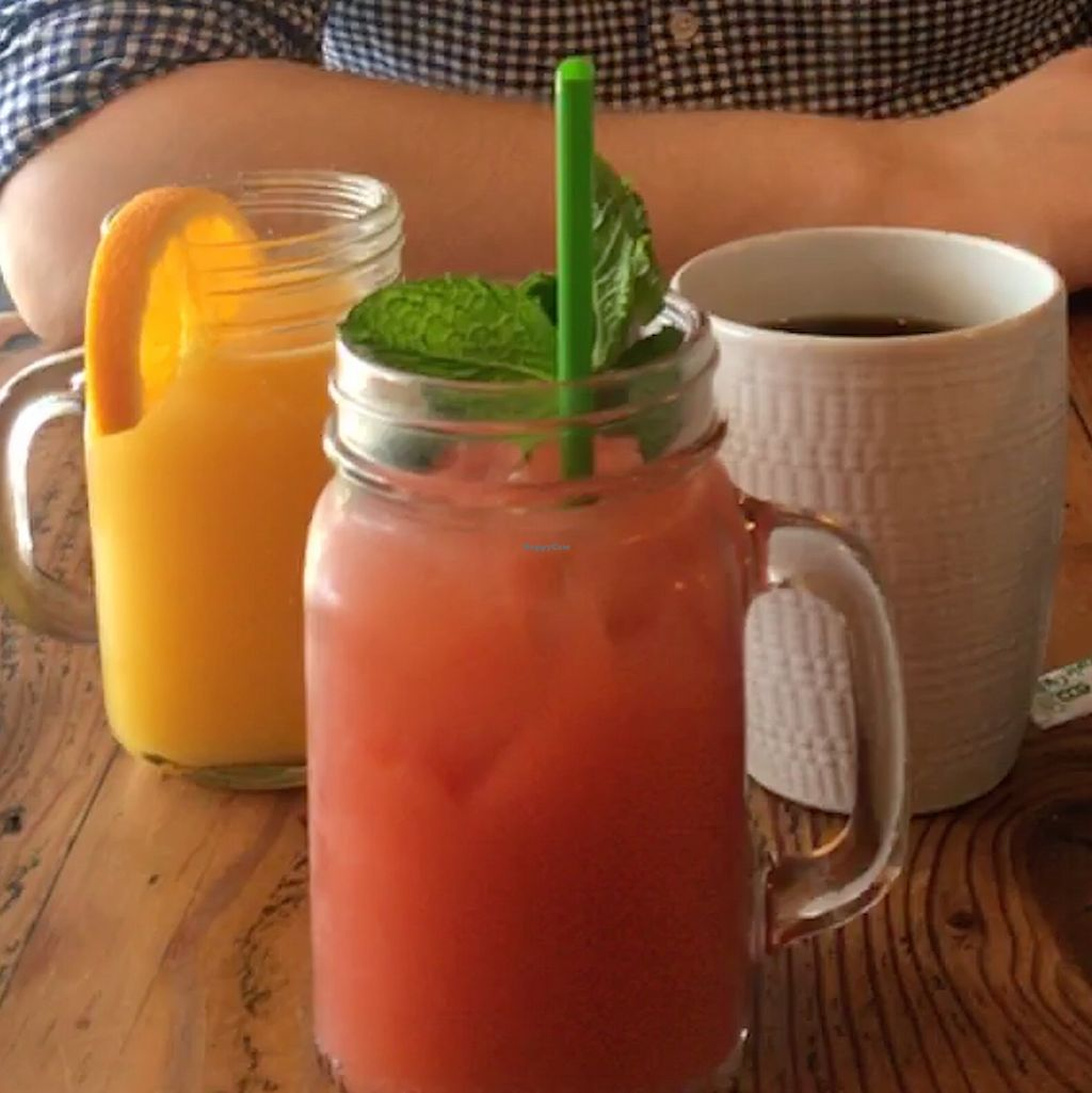 """Photo of The Cafe  by <a href=""""/members/profile/LinneaSahlgaard"""">LinneaSahlgaard</a> <br/>Fresh orange juice, amazing watermelon drink and coffee <br/> April 23, 2018  - <a href='/contact/abuse/image/3033/389765'>Report</a>"""