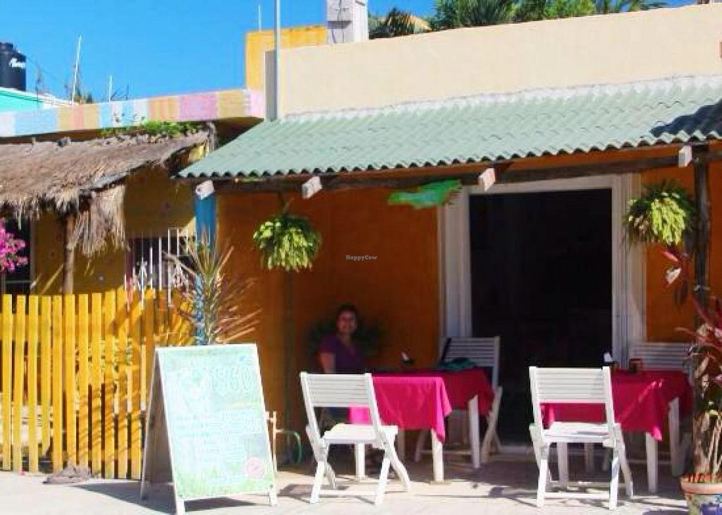 "Photo of Puerto Vegan, Siempre Sano  by <a href=""/members/profile/BriggitteJ"">BriggitteJ</a> <br/>New Location exterior  <br/> March 1, 2015  - <a href='/contact/abuse/image/30394/94479'>Report</a>"