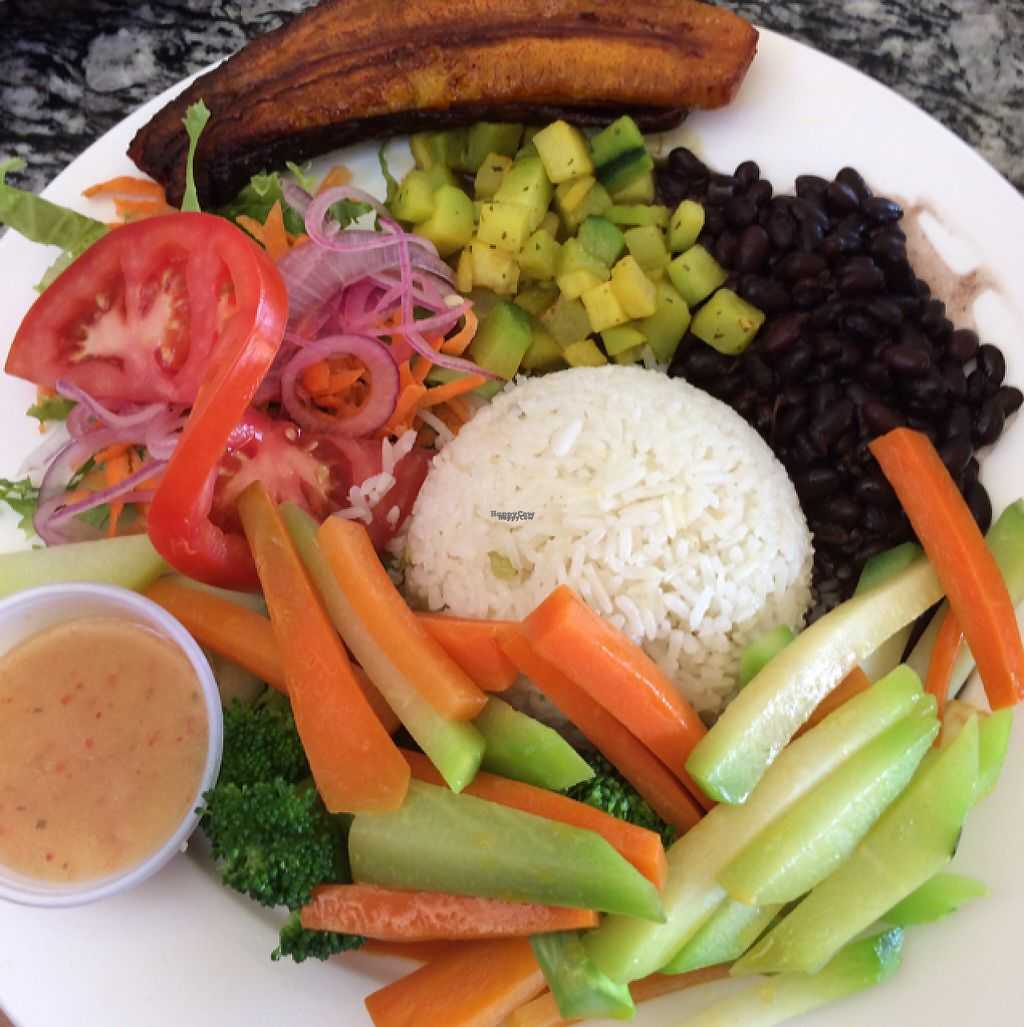 """Photo of El Sol Restaurant and Sports Bar  by <a href=""""/members/profile/pam_osorio"""">pam_osorio</a> <br/>Casado vegetariano <br/> February 26, 2017  - <a href='/contact/abuse/image/30405/230804'>Report</a>"""