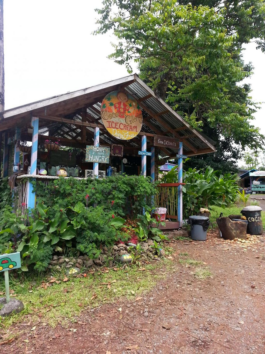 "Photo of Coconut Glen's - Van  by <a href=""/members/profile/sil"">sil</a> <br/>Coconut Glen's on Hana Highway <br/> June 4, 2014  - <a href='/contact/abuse/image/30406/71350'>Report</a>"