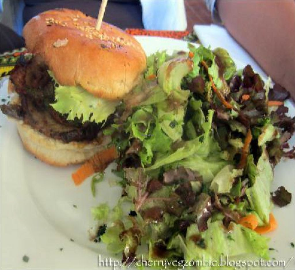 """Photo of Institut Francais Leopold Sedar Senghor  by <a href=""""/members/profile/CherryFlamingo"""">CherryFlamingo</a> <br/>Vegetarian Burger (Vegan without mayonnaise), There are also a vegetarian Tofu Burger <br/> February 7, 2012  - <a href='/contact/abuse/image/30450/222386'>Report</a>"""