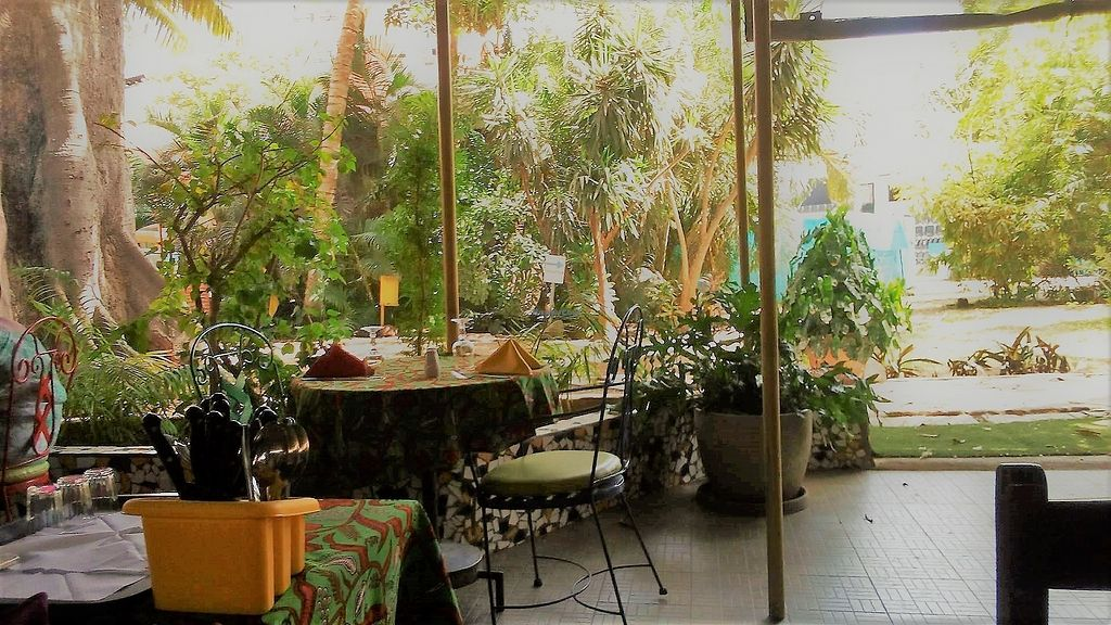 """Photo of Institut Francais Leopold Sedar Senghor  by <a href=""""/members/profile/EvaBlumenwiese"""">EvaBlumenwiese</a> <br/>Restaurant and garden <br/> October 25, 2017  - <a href='/contact/abuse/image/30450/318916'>Report</a>"""