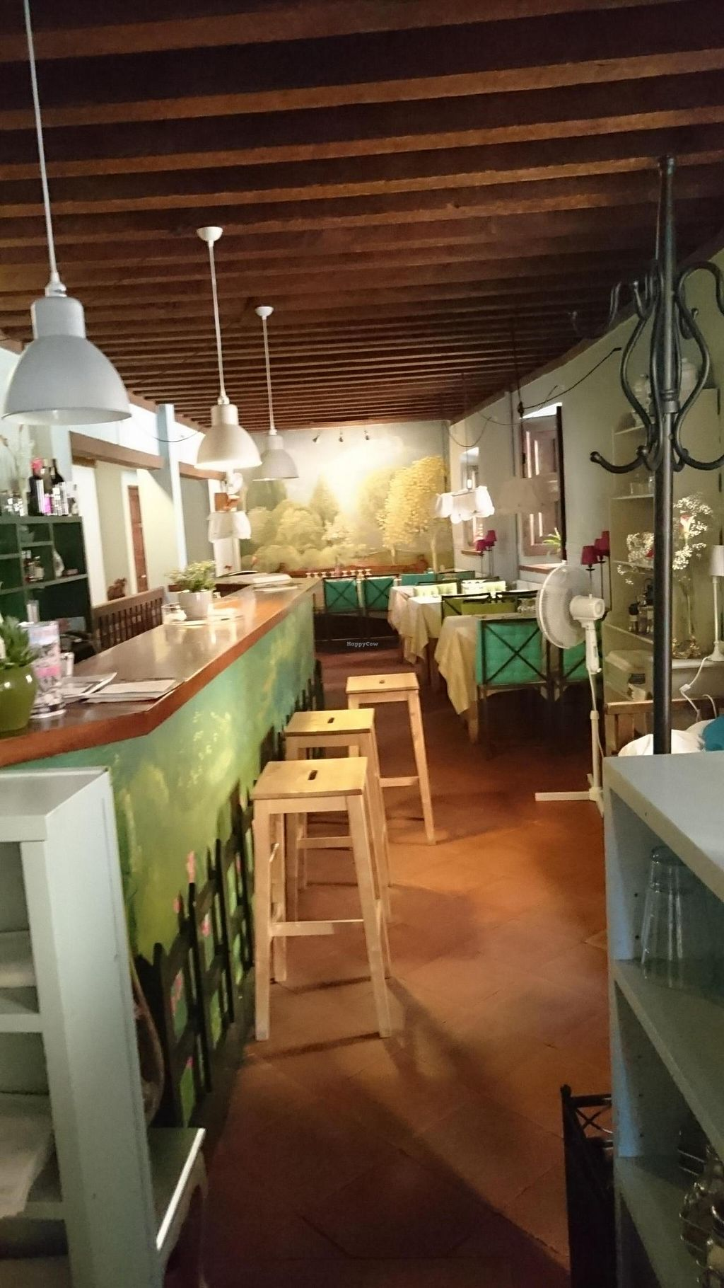 """Photo of Almuzara  by <a href=""""/members/profile/Cesarp"""">Cesarp</a> <br/>restaurant  <br/> July 11, 2015  - <a href='/contact/abuse/image/30532/108881'>Report</a>"""