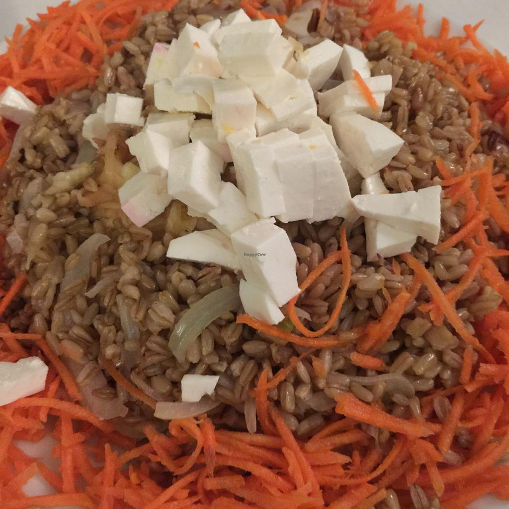 """Photo of Almuzara  by <a href=""""/members/profile/Luciafmtri"""">Luciafmtri</a> <br/>Vegetarian oats, apple, carrot, onion and cheese salad <br/> March 21, 2015  - <a href='/contact/abuse/image/30532/96444'>Report</a>"""